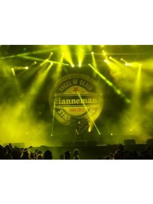 Placa de Rock and Roll  Cod. 150174 Tribute to Jeff Hanneman